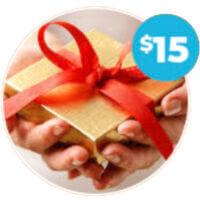 Promotional Gift Ideas Around $15