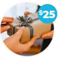 Promotional Gift Ideas Around $25