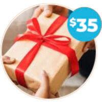 Promotional Gift Ideas Around $35