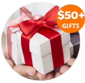 Promotional Gift Ideas $50 Plus